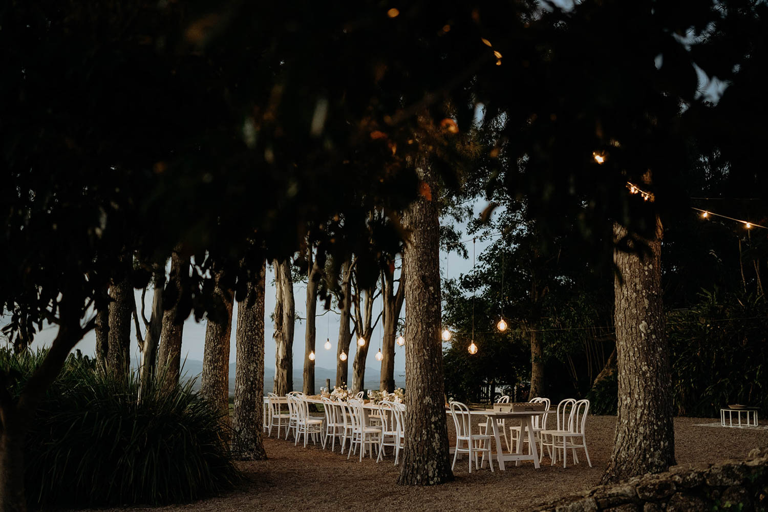 Reception table set up in Byron Bay trees