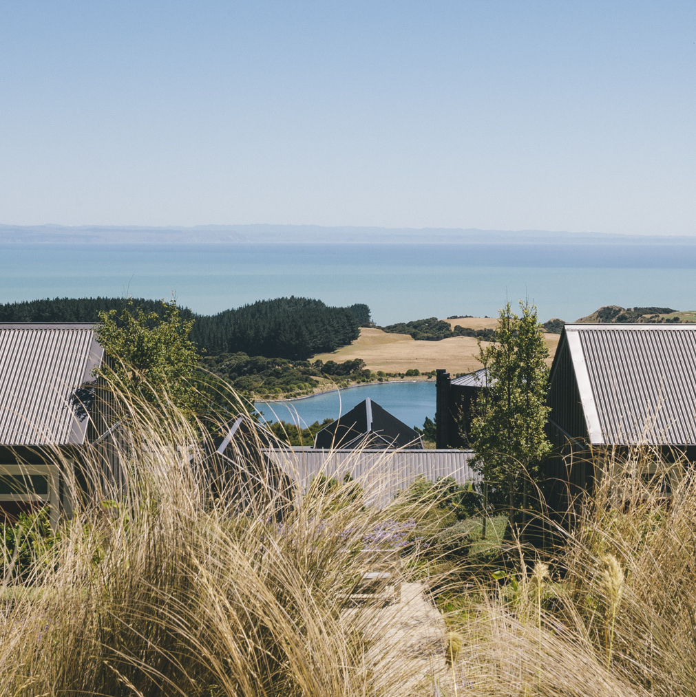 New Zealand Cape Kidnappers - Wedding photography