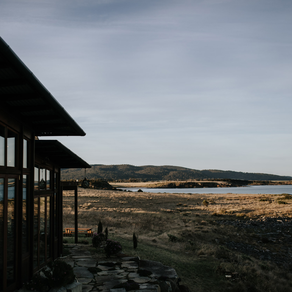 Thaila Haven
