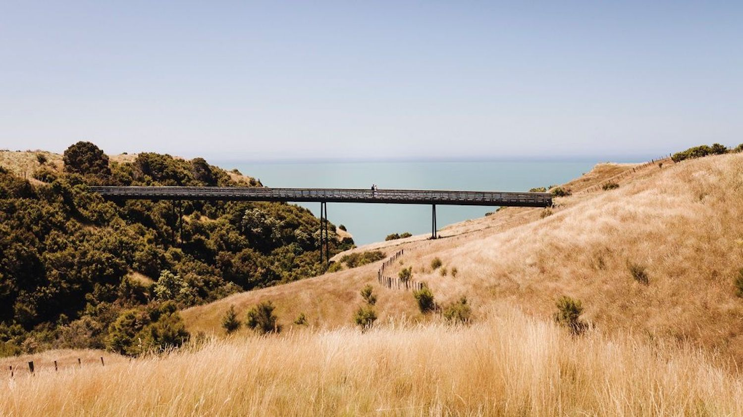 Wedding photography Cape Kidnappers - New Zealand