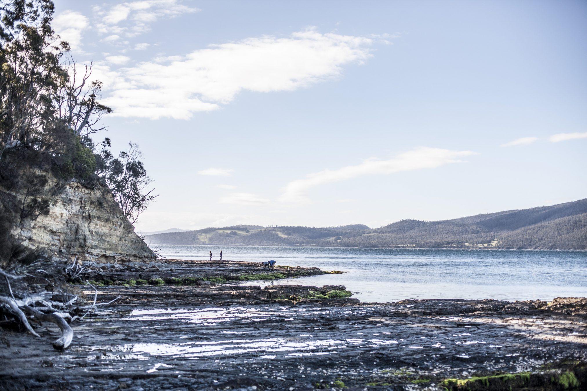 Satellite Island / Wedding photography
