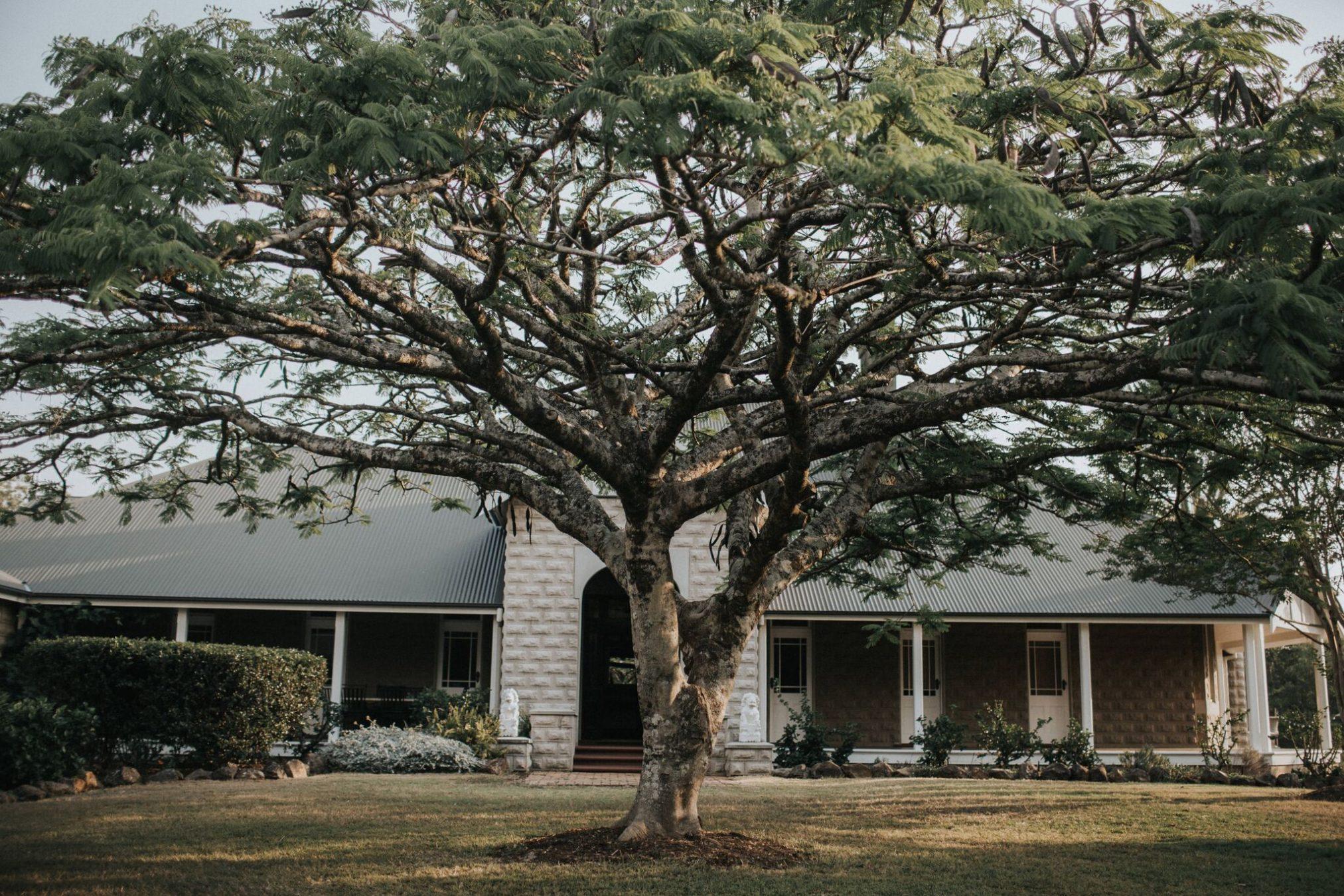 Byron Bay hinterland house.
