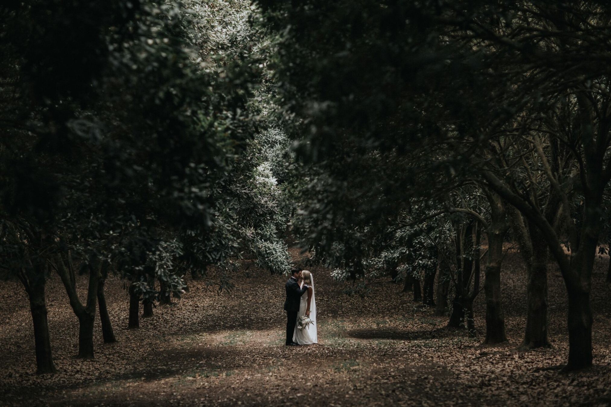 Bride and groom kiss in amongst large trees in Byron Bay.